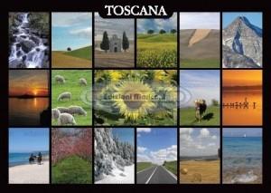 Moriconi/Cartoli (Convertito)-2