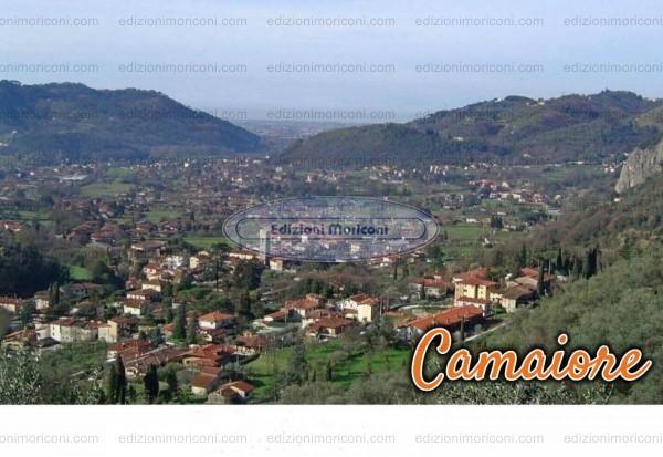 CAM 02