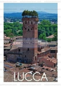 Cartoline Turistiche - Misura 12 x 17 cm